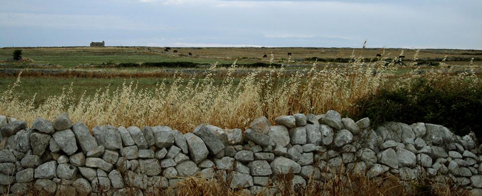 muro-a-secco-ragusa